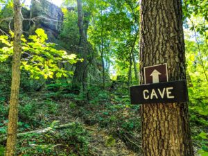 Cave Trail 2