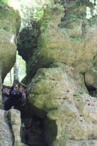 Backbone State Park 3
